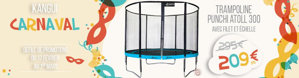 Promotion sur le trampoline punchi atoll 300 avec échelle